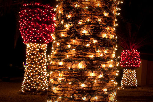 Dsi illuminazione natalizia damastoreitalia tenda